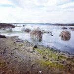 Laguna di Mistras
