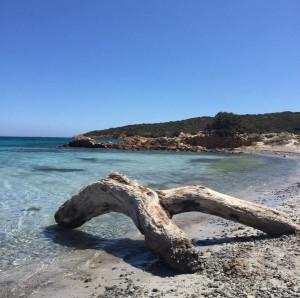 Cala Portese (Sardegna)