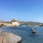 Testa del Polpo (Sardegna)