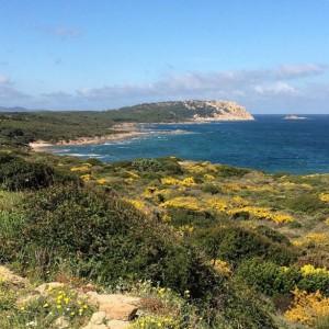Cala Pischina (Sardegna)
