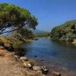 Foce del Rio Osalla