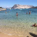 Spiaggia Le Farfalle (Capo Coda Cavallo)