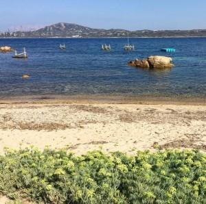 Spiaggia di Punta delle Saline