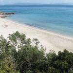 Girin (Isola San Pietro)