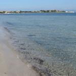 Spiaggia del Giunco (Isola San Pietro)