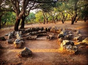 Tombe Neolitiche Pranu Muttedu (Goni)