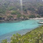 Cala Giordano (Isola Asinara)