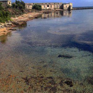 Cala Reale (Isola Asinara)