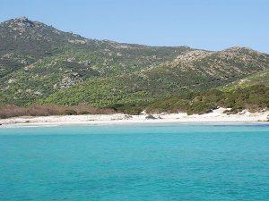 Cala d'Arena (Isola Asinara)