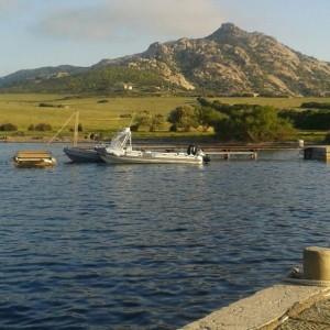 Fornelli (Isola Asinara)