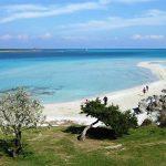 Spiaggia La Pelosa (Stintino)