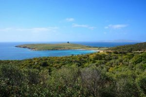 Spiaggia Lu Caroni (Isola Asinara)