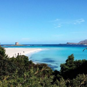 Spiaggia della Pelosa (Sardegna)