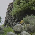 Nuraghe Tradori (Narbolia)