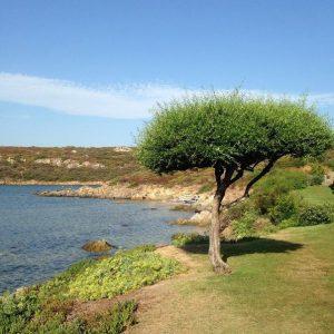 Spiaggia di S'Abba e Sa Pedra