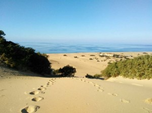 Dune di Piscinas (Arbus)