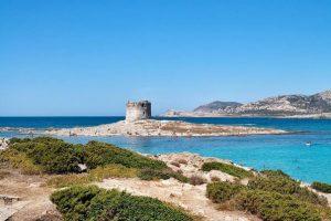 Torre dell'Isola Pelosa