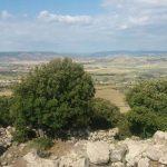 Giara di Siddi (Sardegna)