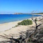 Spiaggia di Naracu Nieddu