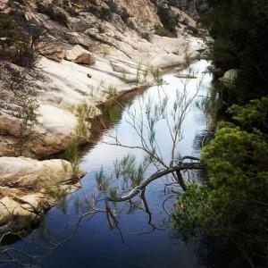 Rio Pitrisconi (San Teodoro)