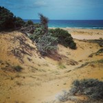 Dune di Pistis