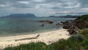 Spiaggia di Cala Delfino (Golfo Aranci)