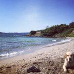 Bassey Spiaggia